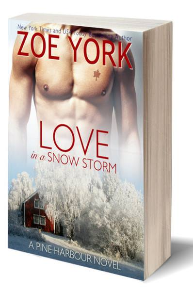 love-in-a-snow-storm